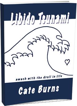libido-tsunami-cover-3d-2