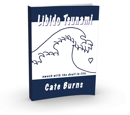 libido-tsunami-cover-3d