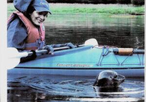 Kayak-seal-copy
